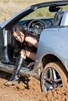 pp007-stuck_in_the_mud_07_small